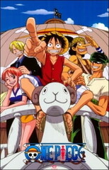 One Piece Recap