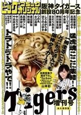 Hanshin Tigers Sousetsu 80-shuunen Kinen Zoukangou