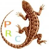 IPRiCeI