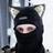 wallcat